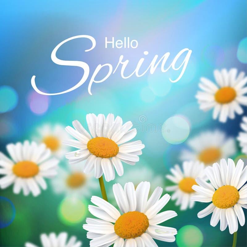 Stock vector illustration Hello, Hi Spring. Realistic chamomiles, blurred defocused background. Macro flowers. Green bokeh. royalty free illustration