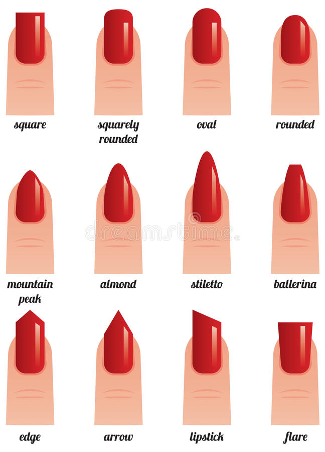 Stock vector illustration on a white background set of nails wit vector illustration