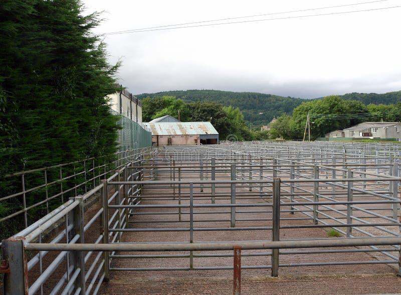 Stock yards, cattle, empty stock image