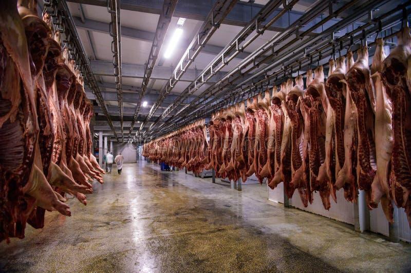 Stockage de viande de porc de réfrigérateur photographie stock libre de droits