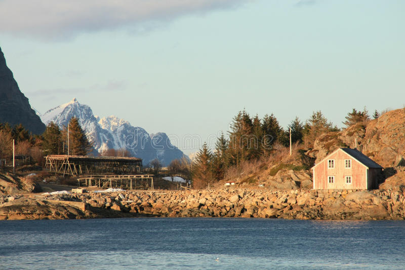 Stockfish house and mountains of Henningsvaer stock image