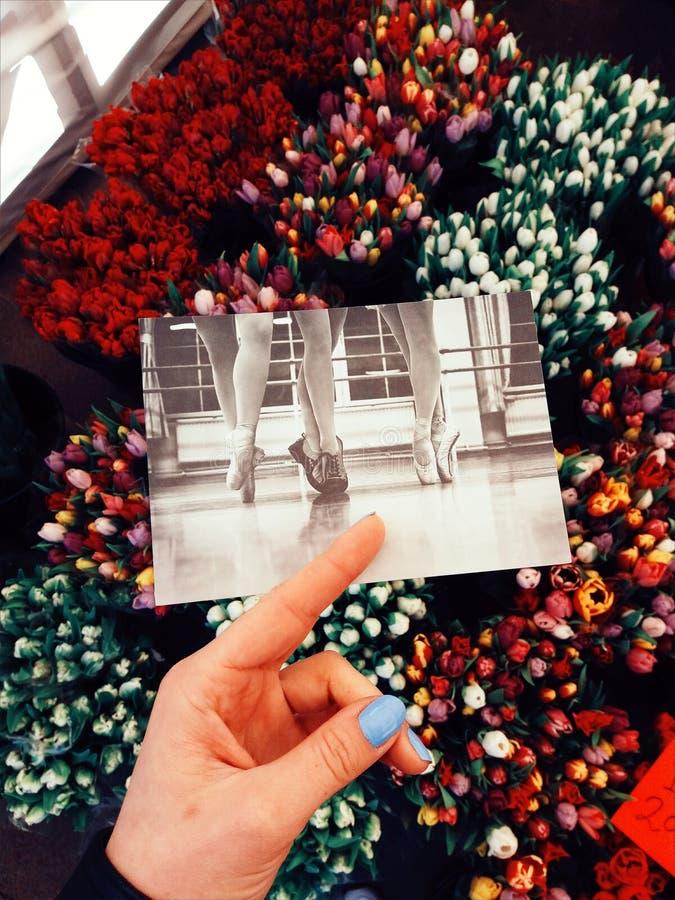 Stockholm. Claes GOran card. Art shop royalty free stock photo