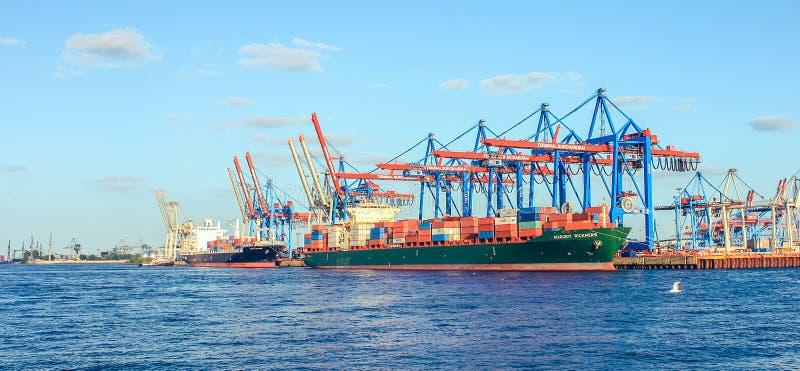 Stoczni i schronienia okrętownictwo z dźwigowym statkiem w Hamburskim Niemcy obraz royalty free