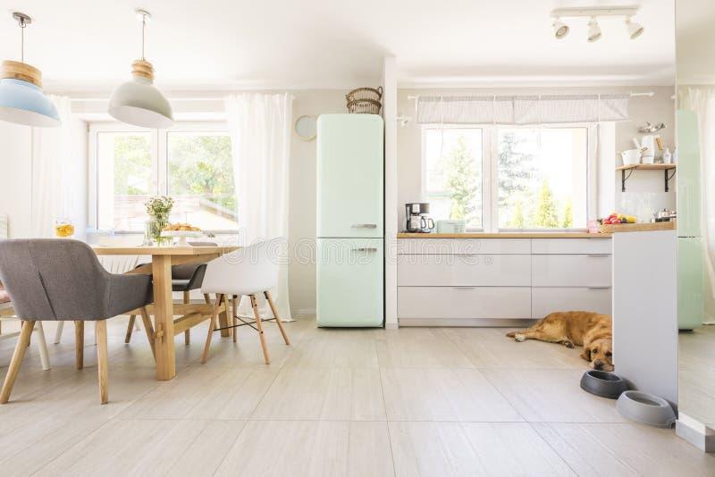 Stoelen bij lijst onder lampen in helder keukenbinnenland met frid stock foto's