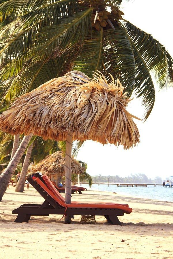 Stoelen en een tikihut op het strand stock afbeeldingen