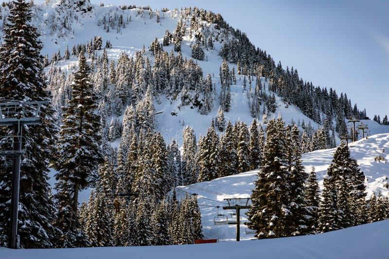 Stoellift bij Stevens Pass-mengsels binnen met de bomen op a stock foto's