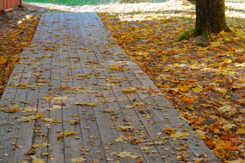 Stoep in de herfst, gele gevallen bladeren op een houten weg stock afbeelding