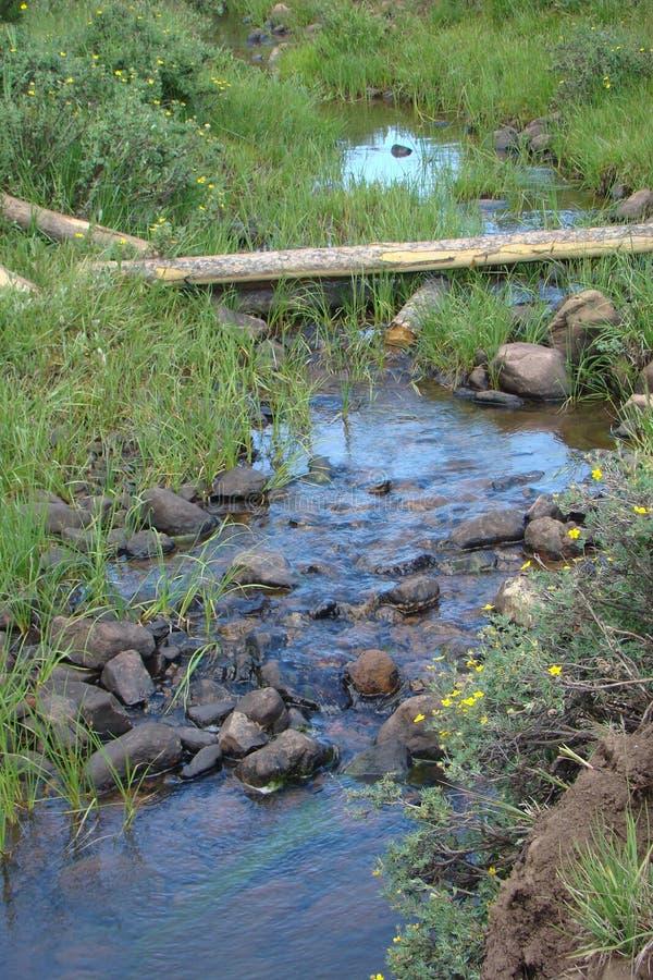 Stoffenverver Creek Blue Reflection stock afbeelding