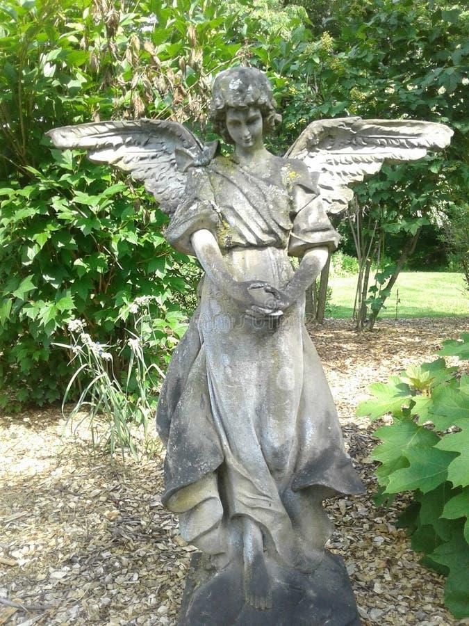 Stoic Gloria. Angel Statue, Serafim, Nature, Stone, Ivy, Forest stock photography