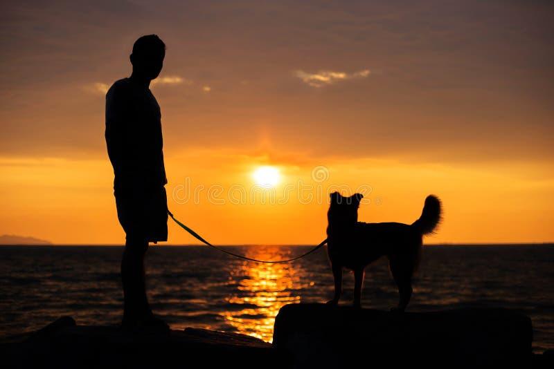 Stojak z psem obrazy royalty free