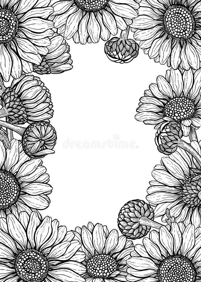 Stokrotka kwiatów projekta elementy ustawiający royalty ilustracja