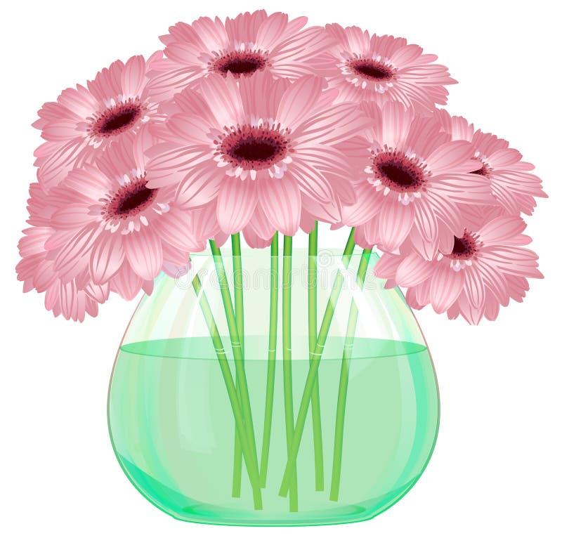 Stokrotki gerbera kwiatu bukiet w szklanej wazie ilustracji