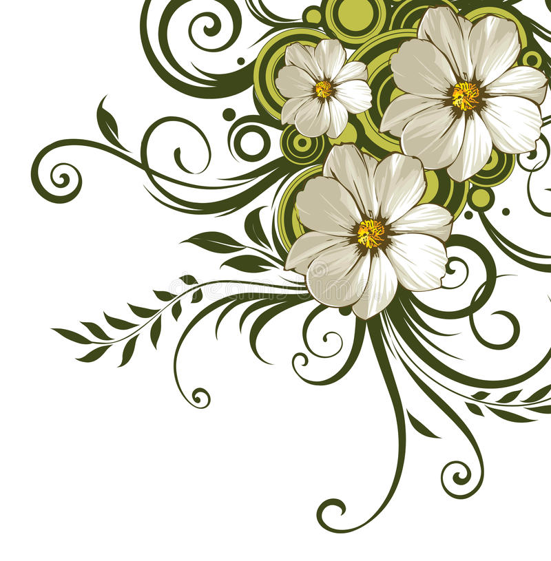 stokrotki kwiatu zieleni winogrady biały ilustracja wektor