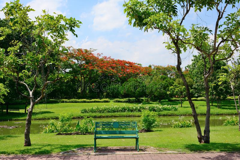 Stolar för att vila i allmänheten parkerar har träd och himmel som bakgrunden arkivfoto