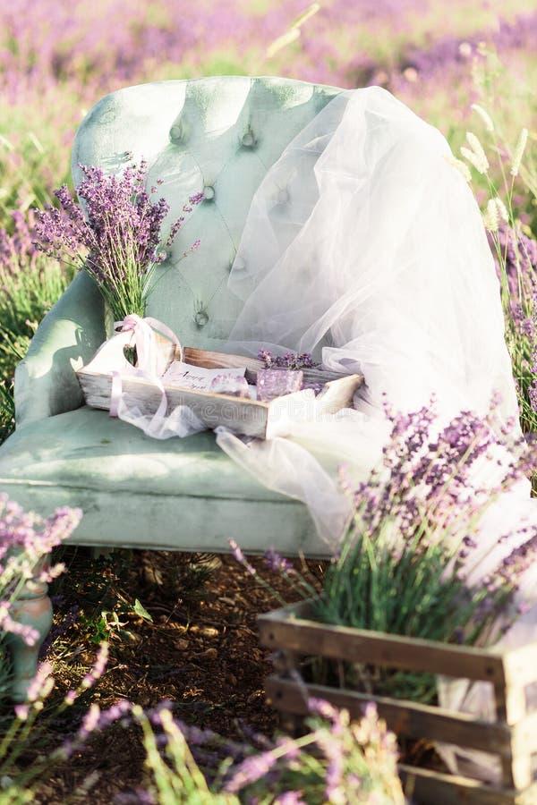 Stolgarnering i purpurlavendelfält på guld- solnedgång royaltyfria bilder