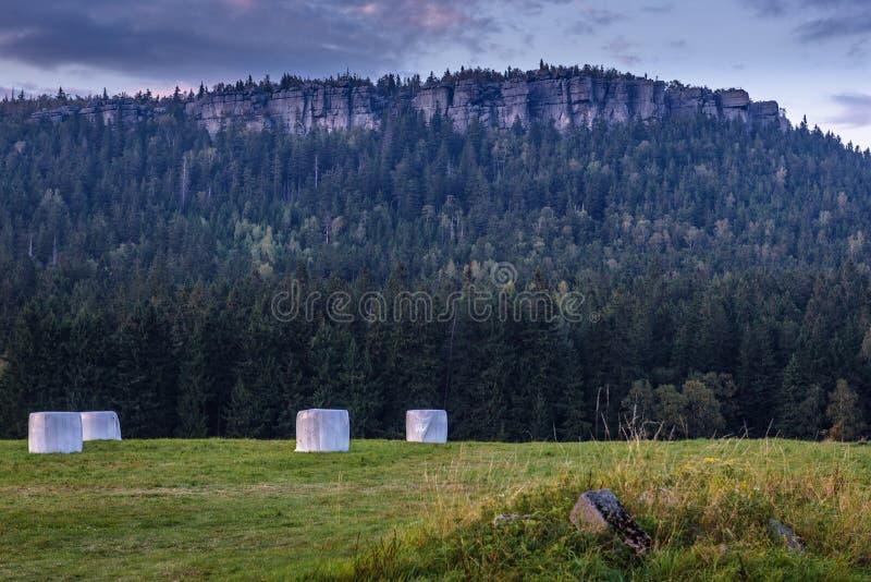 Stolowe berg i Polen arkivbilder