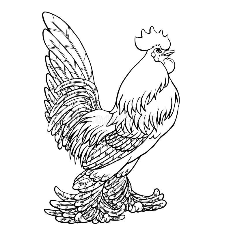 Stolt tuppsvartkontur på vit stock illustrationer