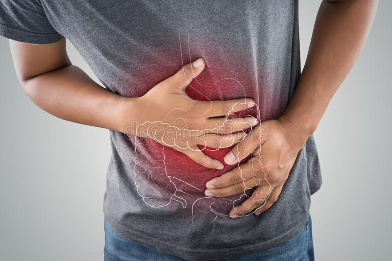 Stomach ache. The photo of large intestine is on the man`s body against gray background, People With Stomach ache problem concept, Male anatomy stock images