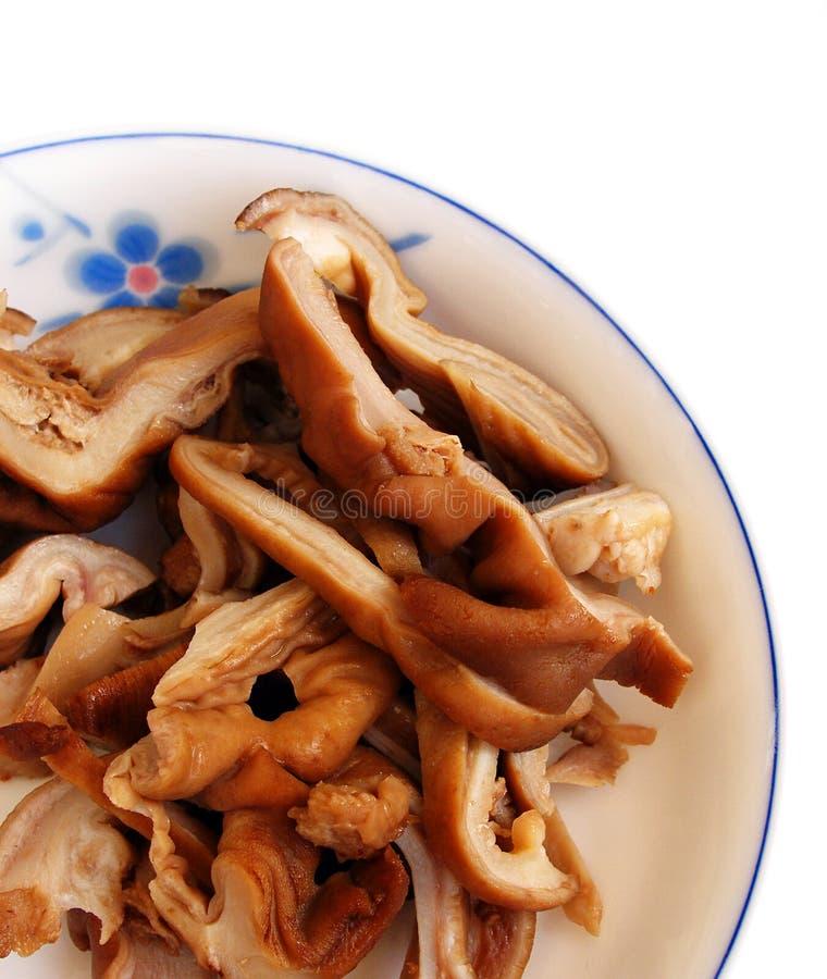 Stomaco del maiale brasato in salsa fotografie stock libere da diritti