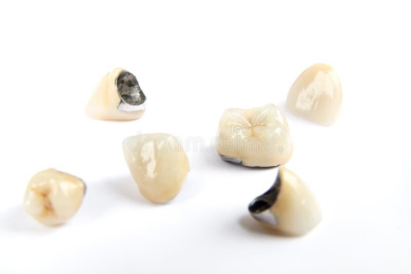 Stomatologiczne ceramiczne ząb korony na białym tle obrazy royalty free