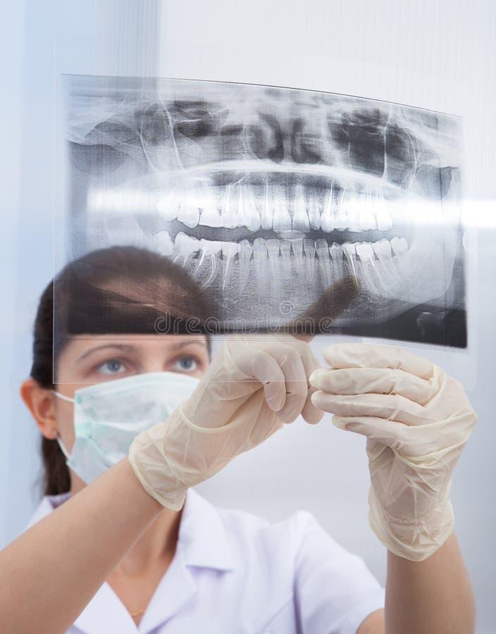 Stomatologist se dirigeant au rayon X de mâchoire photos libres de droits