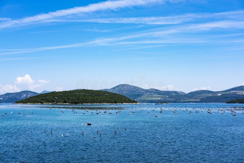 Ston, Dalmatië stock foto's