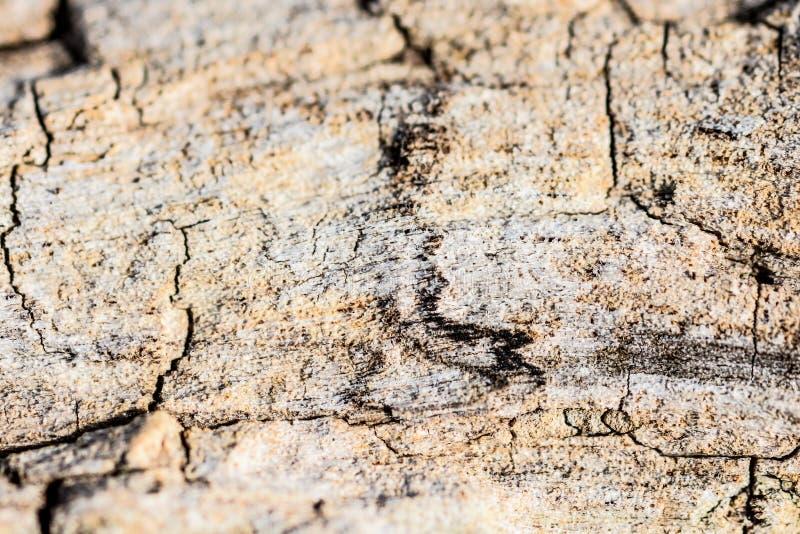 Stone και μορφές στοκ εικόνα με δικαίωμα ελεύθερης χρήσης