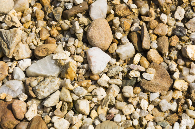 Stone background. Texture with lot of pebble stone in sunlight, stone background royalty free stock images