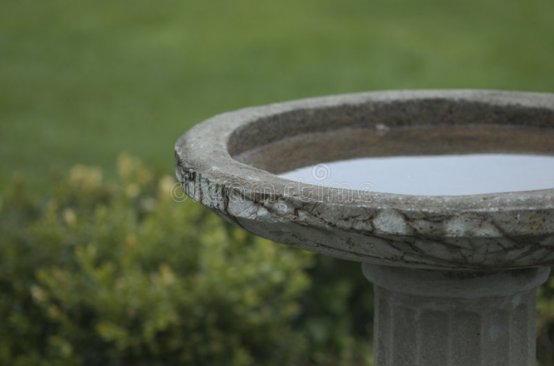 Stone bird bath. With calm water royalty free stock image