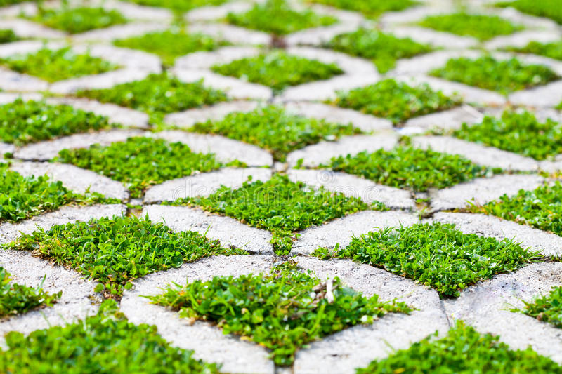 Stone block walk path in the park with green grass stock image