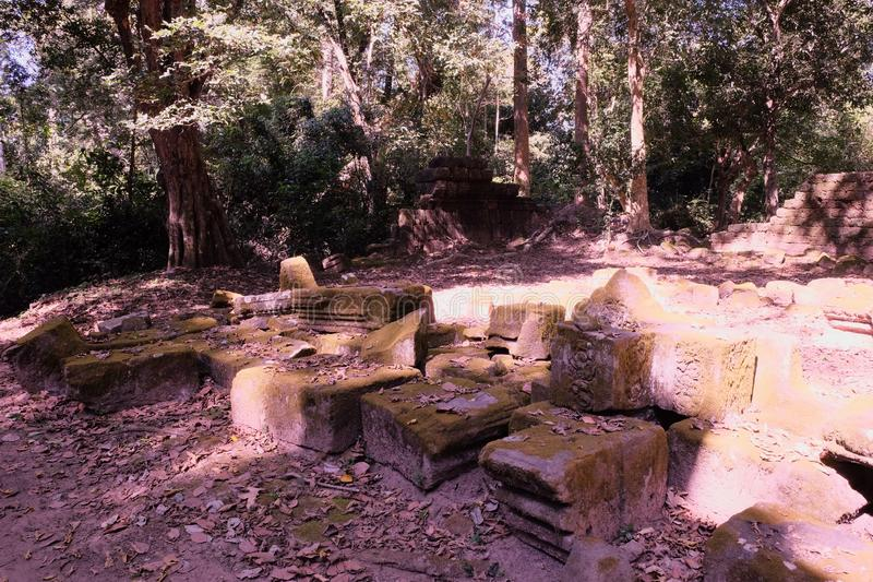 The stone blocks of an ancient destroyed building are overgrown with moss. The remains of ancient ruins in a tropical forest on a stock photo