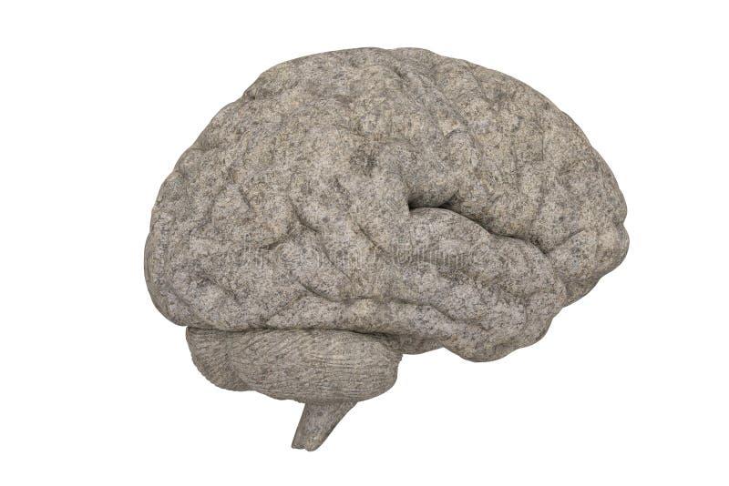 Stone brain isolated on white background, 3D illustration.  royalty free illustration
