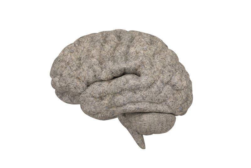 Stone brain isolated on white background, 3D illustration.  vector illustration