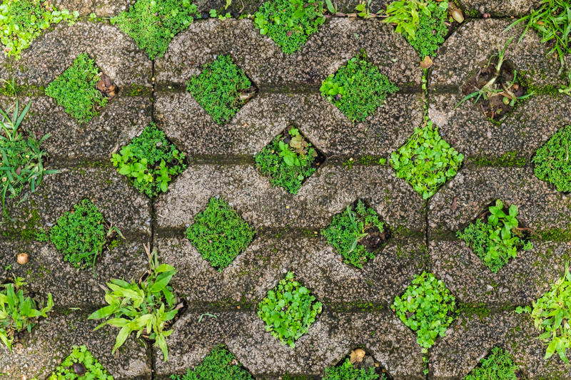 Stone bricks with grass and moss. background, texture royalty free stock photo
