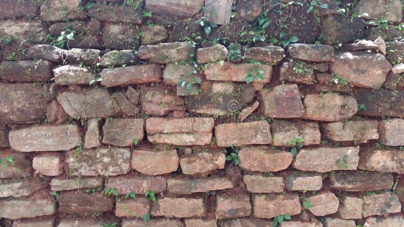 Stone bricks wall texture stock images