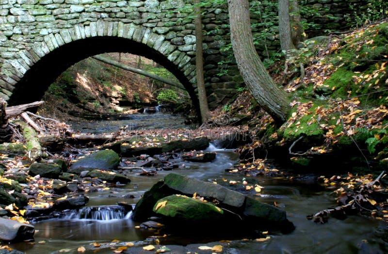 Download Stone Bridge stock photo. Image of water, trunk, tree - 1354414