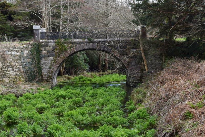 Bridge over Green Fern Creek stock photo