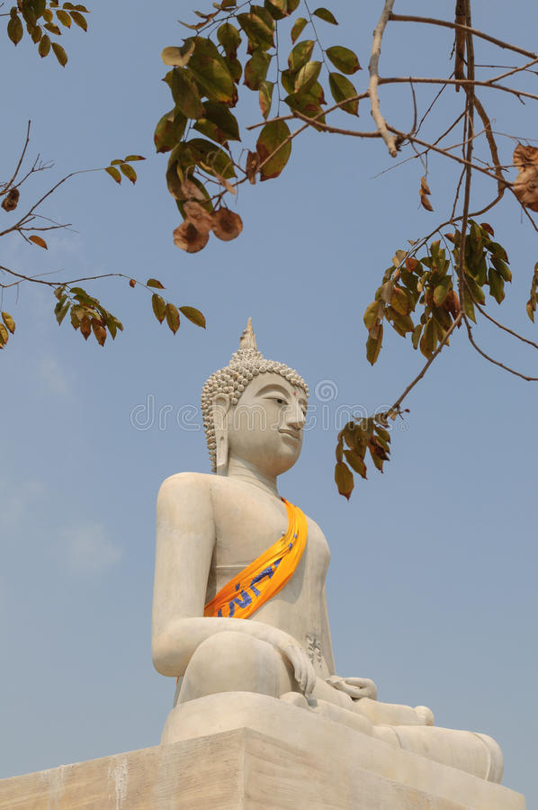 Stone buddha statue. In peaceful royalty free stock images