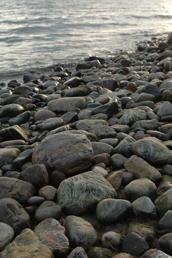 Download Stone coast stock photo. Image of seacoast, humid, beach - 8786936
