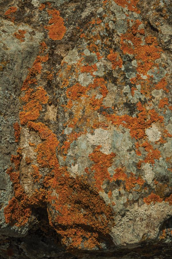 Stone covered by moss and lichens at Evoramonte royalty free stock image