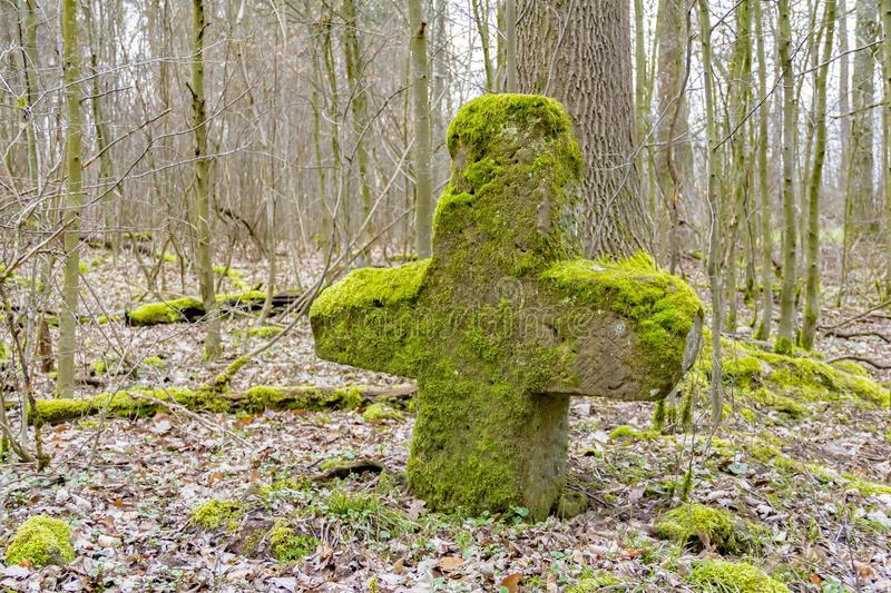 Stone cross in a forest royalty free stock photography