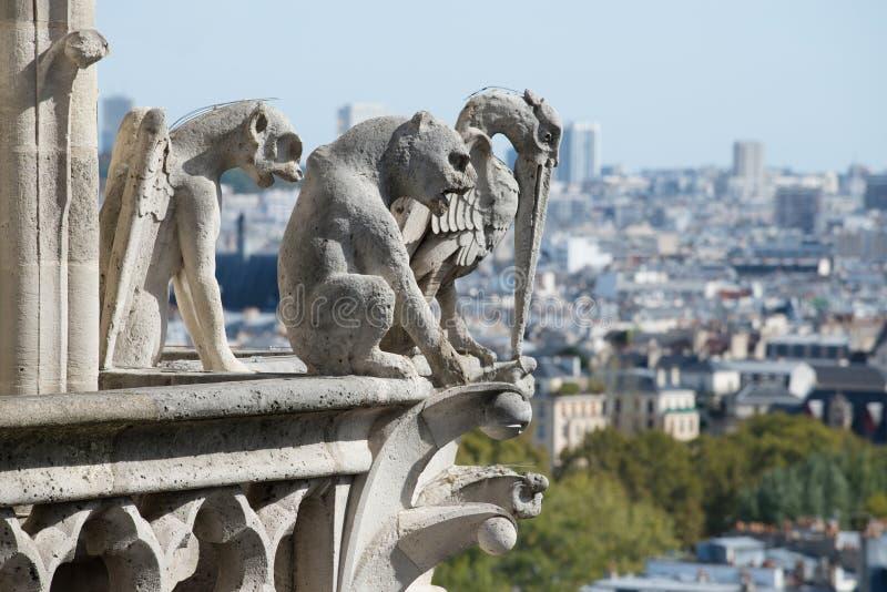 Stone demons gargoyle on the Notre Dame - Paris royalty free stock photography