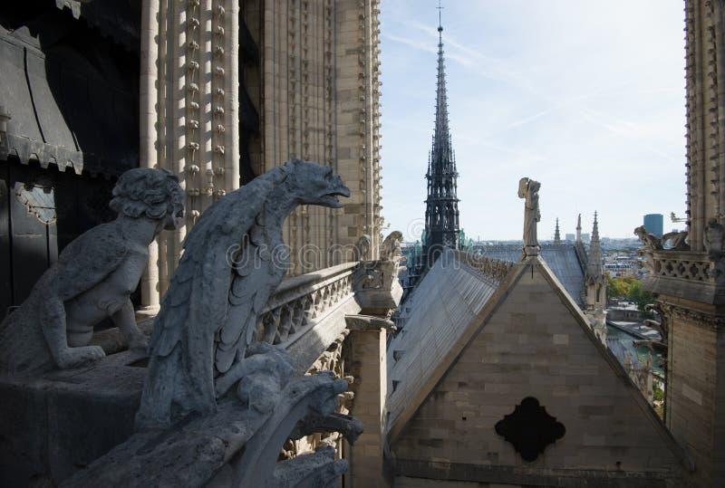 Stone demons gargoyle on the Notre Dame - Paris stock photography