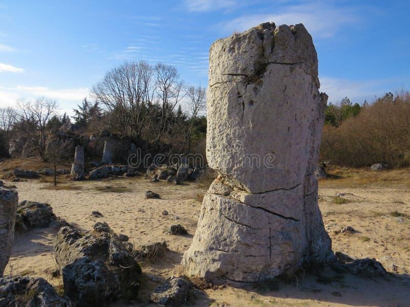 The Stone Desert or Stone Forest near Varna. Naturally formed column rocks. Fairytale like landscape. Bulgaria. The Stone Desert or Stone Forest near Varna royalty free stock photo