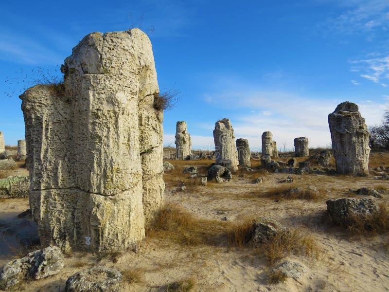 The Stone Desert or Stone Forest near Varna. Naturally formed column rocks. Fairytale like landscape. Bulgaria. The Stone Desert or Stone Forest near Varna royalty free stock images