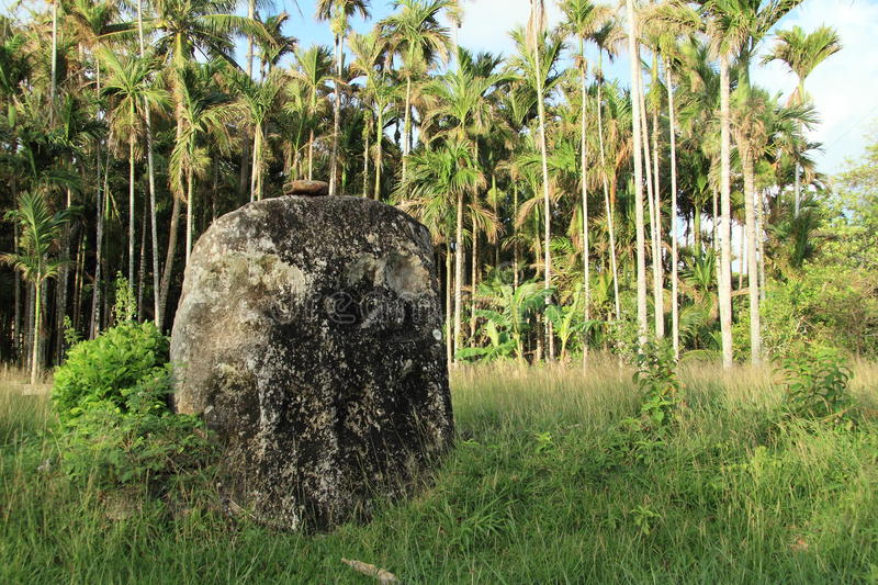 Stone face inf front of palmtrees royalty free stock images