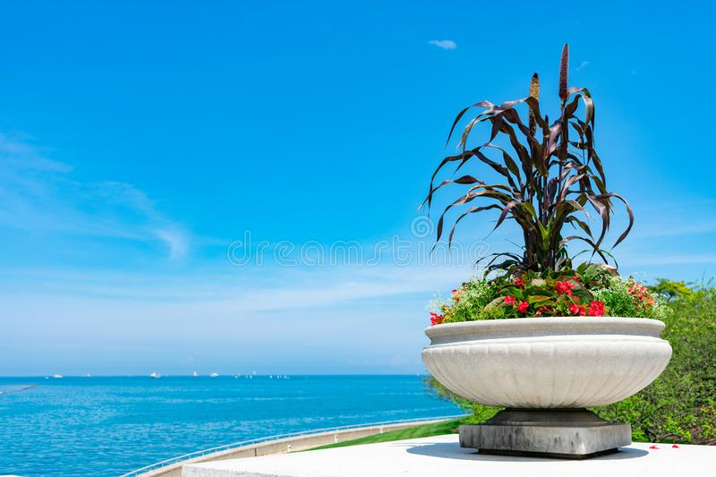 Beautiful Flower Pot with Flowers next to Lake Michigan in Chicago during Summer royalty free stock images