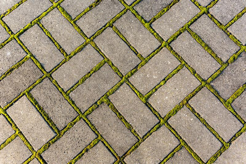 Stone footpath with moss, close up image stock photos