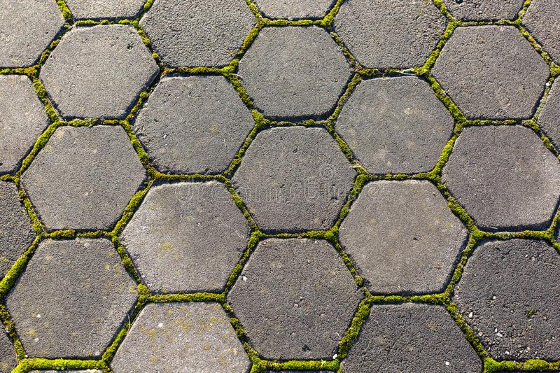 Stone footpath with moss, close up image royalty free stock photos