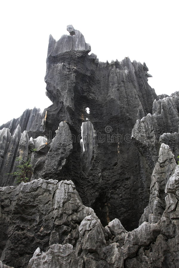 Free Stone Forest Stock Photography - 6413832